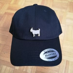 Customized The GOAT Pin Dad Hat NWT